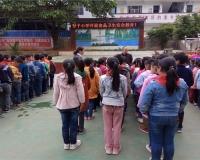丰都办普子小学开展食品卫生安全宣传教育活动